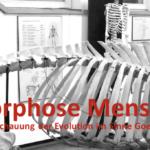 Metamorphose von Mensch und Tier
